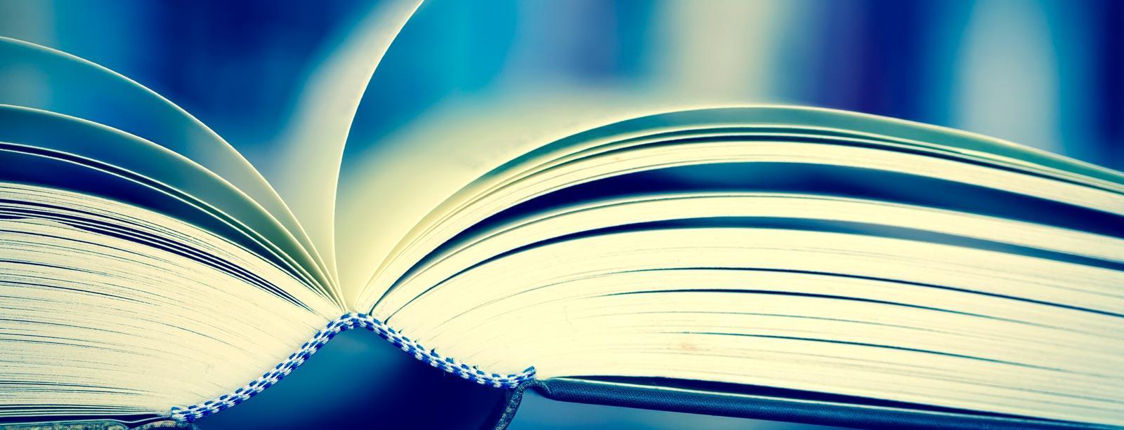 Pubblicazioni Cesnir